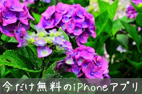 【iPhoneアプリ今だけ無料】OSnap! Time-Lapse & Stop Motion